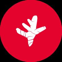 FLEXOFYTOL-icone-curcuma-1